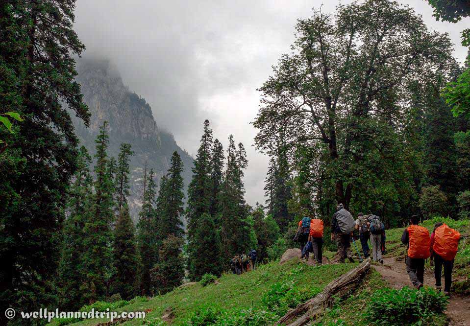 Beautiful forest trails : HAMPTA PASS TREK