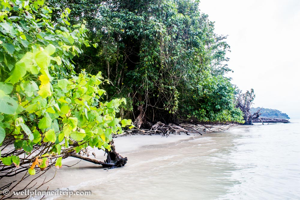Elephant Beach, Havelock, Andaman