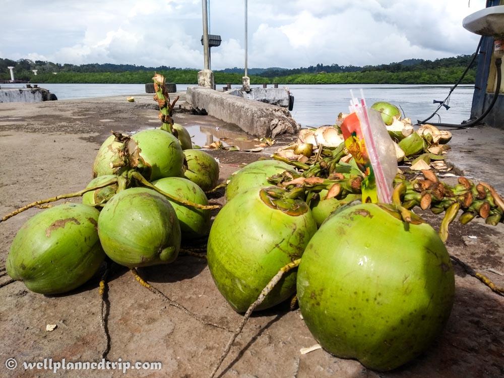 Tender cocunuts, Andaman