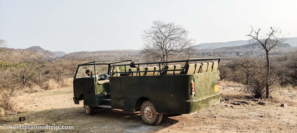Canter, Ranthambore national park safari