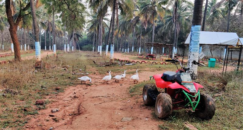 A.T.V Bikes, Windflower Prakruthi Resort & Spa, Bangalore